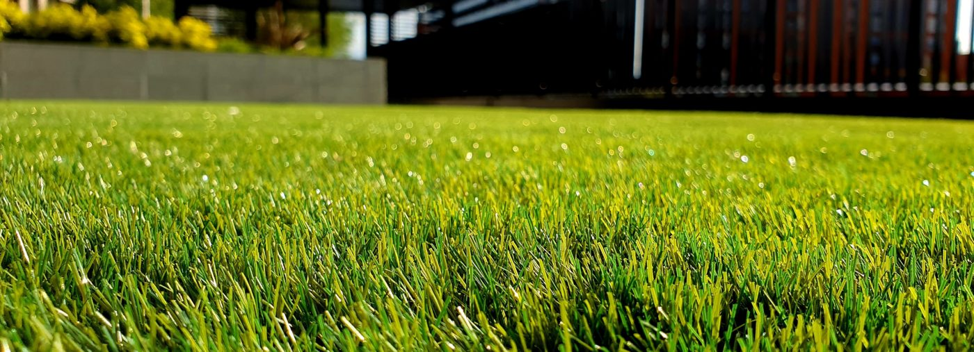 Maintain Your Lawn Area According to the Seasonal Change